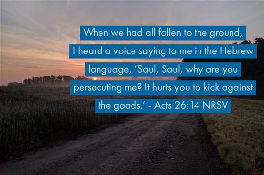 28 Weeks Acts Devotion Week 26